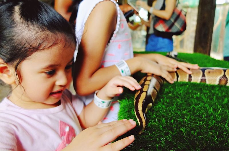 Close-up of cute smiling girl holding snake on green rug
