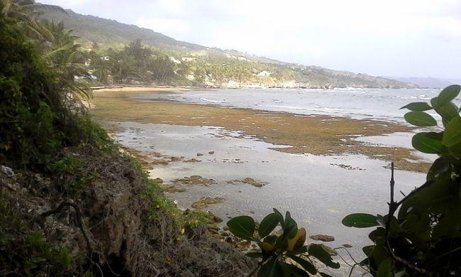 A place I go to be at peace I really do love Barbados