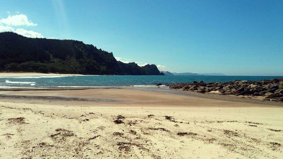 Beautiful New Zealand Ocean Nature