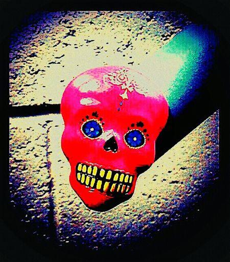 Skulls Check This Out Wtf Is This? Skullporn Show Me Your Dark Side Skull Art Skullcandy Skullart Not Strange To Me Headshot Skulls♥ Skulls 💀 Skulls💀 Skull