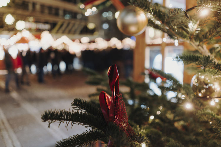 Christmas Market Germany Christmas Christmas Market Christmas Decoration Christmas Lights Decoration Holiday Illuminated Celebration Tree Plant Christmas Ornament Close-up Focus On Foreground christmas tree No People Indoors  Selective Focus Red Holiday - Event Celebration Event