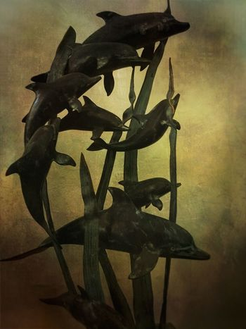 Dusky dolphins Dolphins Dolphin Art Statues/sculptures Artistic Expression Artistic Edit