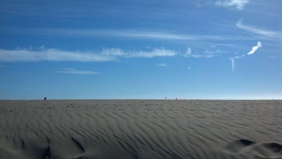 Ocean Beach Phoneography San Francisco California Coast California Sun