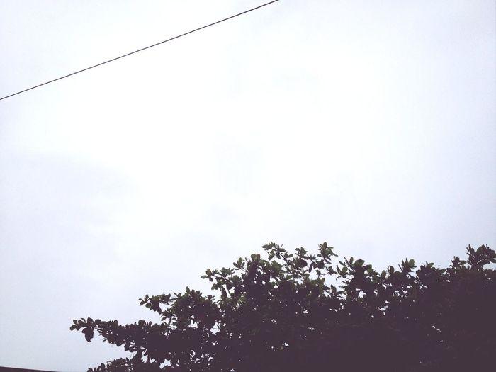 chuvinha boa e céu lindo