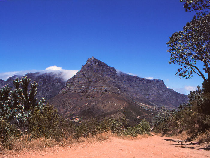 Table Mountain Ancient Civilization Arid Climate Beauty In Nature Blue Clear Sky Day Environment Film Photography Land Landscape Mountain Mountain Peak Nature No People Non-urban Scene Outdoors Plant Scenics - Nature Tourism Tranquil Scene Tranquility Travel Travel Destinations Tree