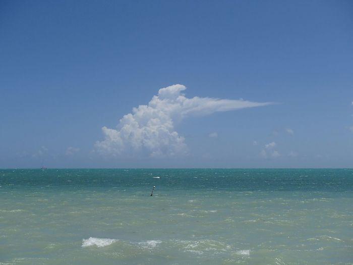 Cloud on Atlantic Ocean EyeEmNewHere Key West Sky Sea Water Horizon Horizon Over Water Beauty In Nature Scenics - Nature Cloud - Sky Idyllic Turquoise Colored