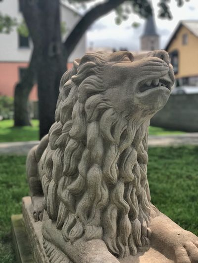 Lion Löwe Kriegerdenkmal Statue Representation Sculpture Art And Craft Focus On Foreground Close-up No People