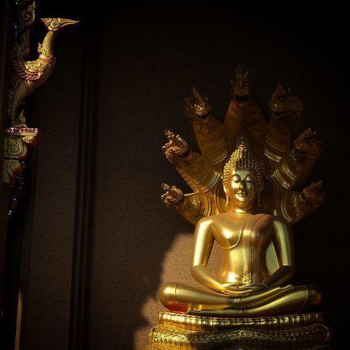 Buddha Buddha Statue Buddhism