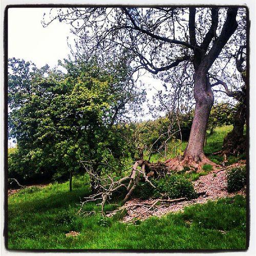 Thixendale Eastyorkshire Northyorkshire Wolds northwoldsway chalklandsway thewalkingcaveman