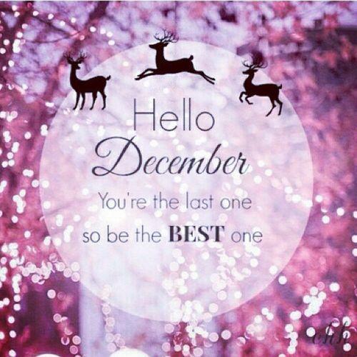 Hellodecember Welcome December 1122014 Happydecember