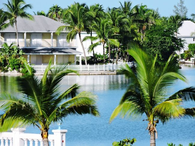 """Life in Paradise"" / A gated community in Nassau, Bahamas; complete with private canal leading to the ocean. Every property is waterfront with its own dock. House Goals 