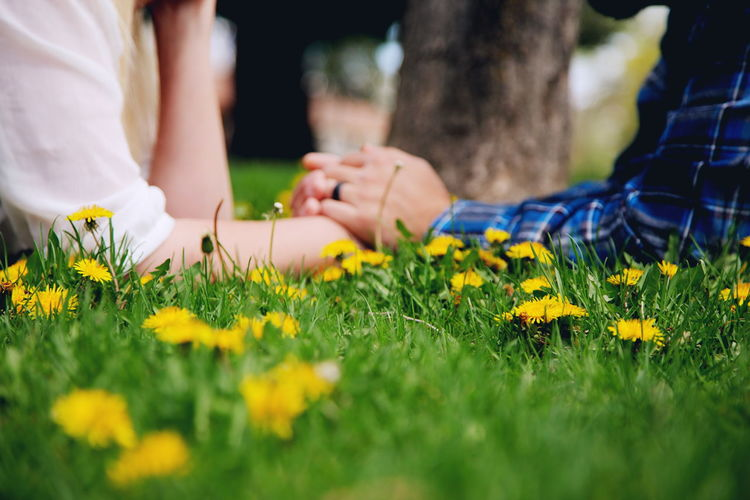 Midsection of man and woman holding hands on flowering field
