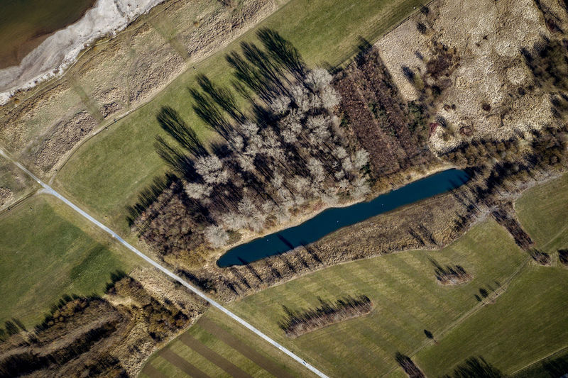 first sunny hours in Rheinaue near Cologne-Worringen No People Nature Day Outdoors Dronephotography Aerial Photography Riverside Trees Environment Landscape Plant High Angle View Patchwork Landscape Aerial View