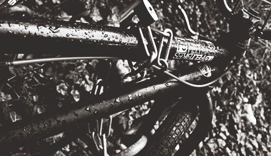 preferred mode of transportation. Rotkäppchen Bike Fortheloveofblackandwhite
