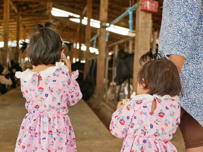 Rear view of girls standing in animal pen
