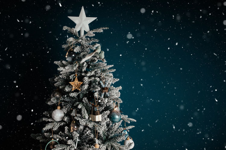 Illuminated christmas tree during winter