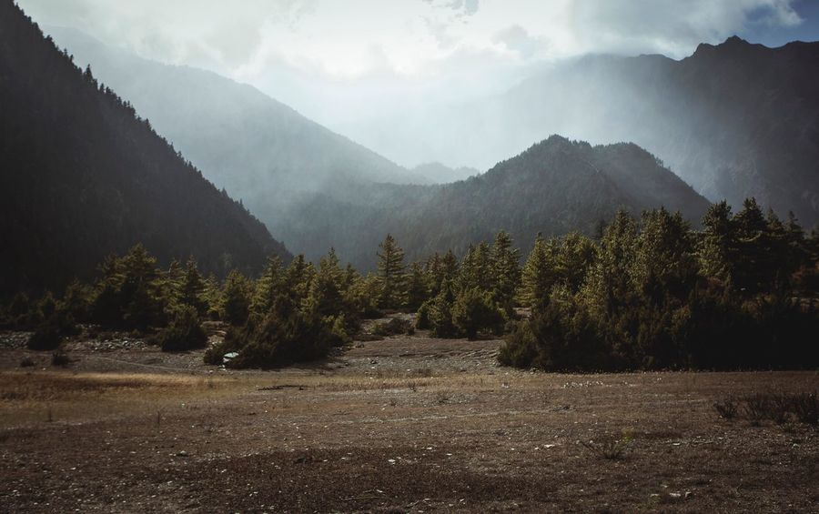 Forest Mountain Mountains Mountain Range Field Nepal Himalayas Landscape Landscape_Collection Nature Nature_collection Trees Light