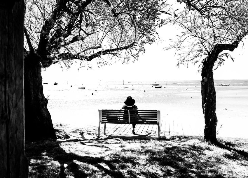 she 33 Aquitaine Beach Beauty In Nature Nature One Person Outdoors People Real People Rear View Relaxation Sitting Sud-ouest Tranquil Scene Tranquility Tree Water