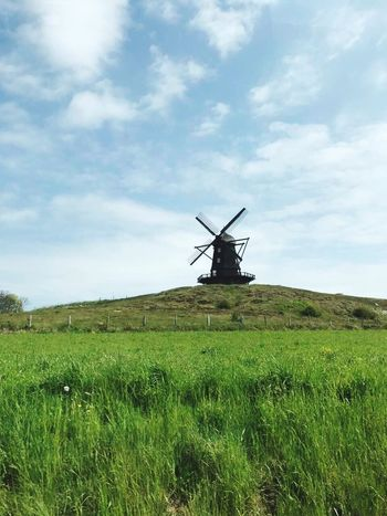 No Filter Field Environmental Conservation Wind Power Windmill Wind Turbine Sky Cloud - Sky Rural Scene Alternative Energy Grass Landscape Nature Renewable Energy Day Agriculture Outdoors Tranquility Green Color Fuel And Power Generation No People