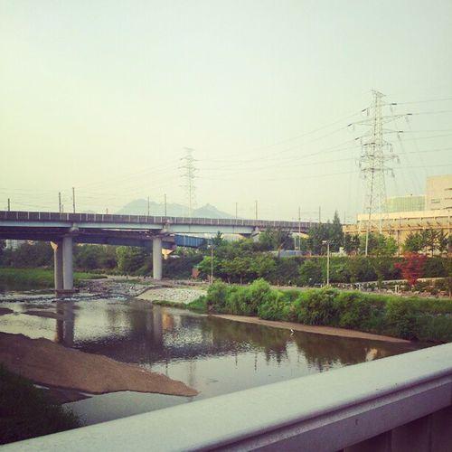 꼬물꼬물 희뿌연 오후.. 이런날은 시간이 멈춘것같다.. I am Blue in Seou Korea