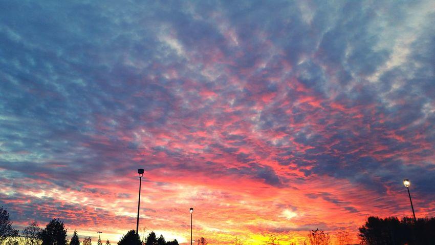 Sky Clouds Sunset Colors EyeEm Sunsets Firesky Beautiful Sunset Pacific Northwest  November Sunset Smartphone Photography Breathtaking Orange Sky