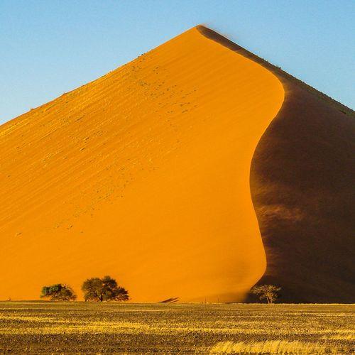 Desert Arid Climate Nature Sand Remote Namib Dunes Sand Dune Landscape Dry Arid Landscape Namibia Namib Desert Morning Light The KIOMI Collection