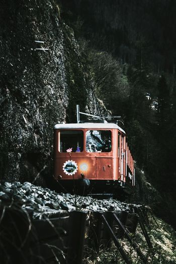 Abandoned train on railroad track in forest