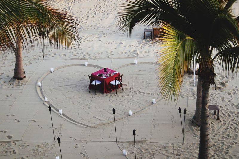 Mexico Beach Dining Celebration Heart Shape Love Tree Plant Beach Palm Tree Sand Nature Tropical Climate