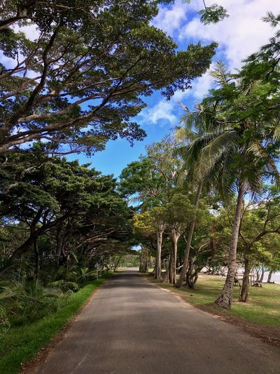 Isle Of Pines Travel Beach Beauty In Nature Landscape Nature New Caledonia Road Scenics - Nature Sky Tree Treelined
