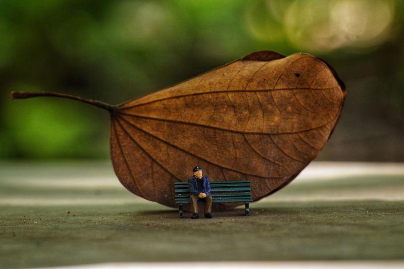 Man sitting on street during autumn