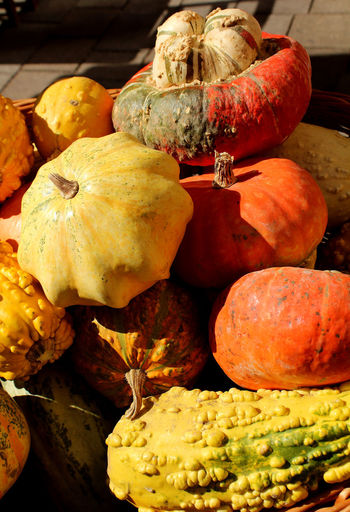 Autumn Colors, Morning Autum Sky In Bangladesh. Autumn Colours... Decorative Pumpkins Autumn Colours Choice Close-up Day Focus On Foreground Food Food And Drink Freshness Fruit Harvest Healthy Eating High Angle View Market No People Ornamental Pumpkins Pumpkin Retail  Squash - Vegetable Still Life Variation Vegetable Wellbeing