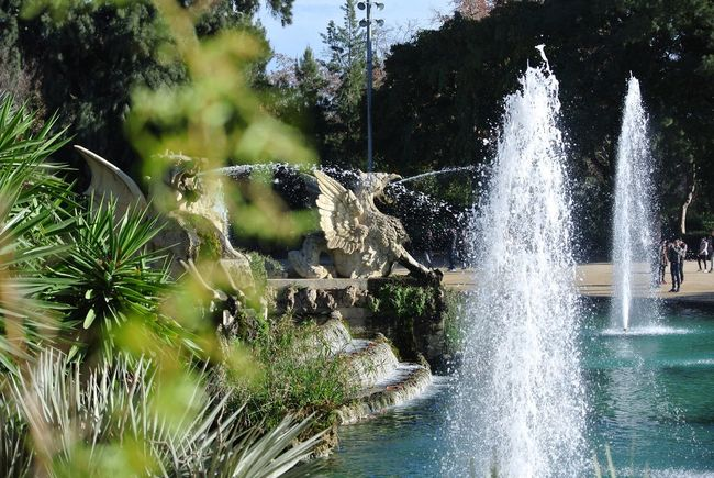 Check This Out Taking Photos Bcn Fountain Water Park Barcelona City Waterdragon