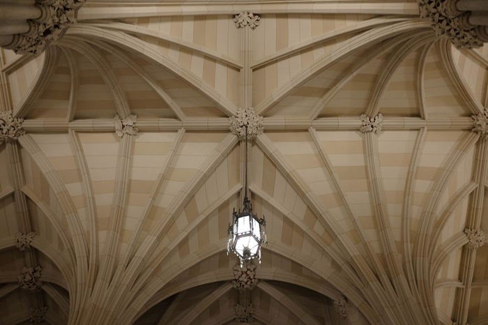 Archetecture Built Structure Ceiling Old Ornate Pattern St. Patrick's Cathedral Symmetry