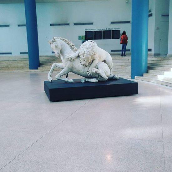 The Tourist Rome Italy Capitolini Museum Showcase: February Smartphonephotography