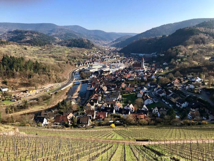 Idyllic Germany Lake Valley Vineyards  Vine Mountain Landscape Sunlight Land Scenics - Nature High Angle View