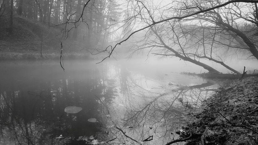 Thought I'd experiment with black and white for this shot. Same hike. Tree Water Reflection Nature No People Wet Backgrounds Lake Close-up Full Frame Cold Temperature Beauty In Nature Outdoors Branch Sky Day Fog Black And White Photography Fine Art Photography Fine Art Finding New Frontiers Miles Away Maryland Burnt Mills Dam Silver Spring, Maryland, USA The Great Outdoors - 2017 EyeEm Awards