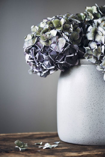 Close-up of purple flower vase on table