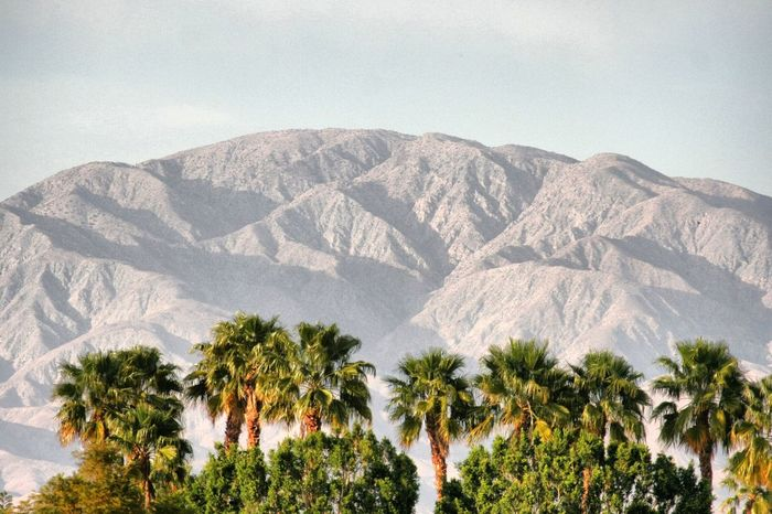 Palm Springs Palms Moutains California