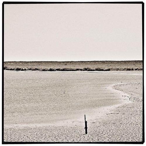 le #sel de #mer | #camargue #france #provence #bestoftheday #all_shots #snapseed #camera+ #jj #jj_forum #blackandwhite #bnw #bw #monochrom #noir #simplyb&w #blancoynegro #baw #blacknwhite Blacknwhite Mer Bnw Camargue Provence Monochrom Snapseed Blancoynegro All_shots Camera Bestoftheday Noir Baw Blackandwhite Jj  France Jj_forum Sel Simplyb Bw