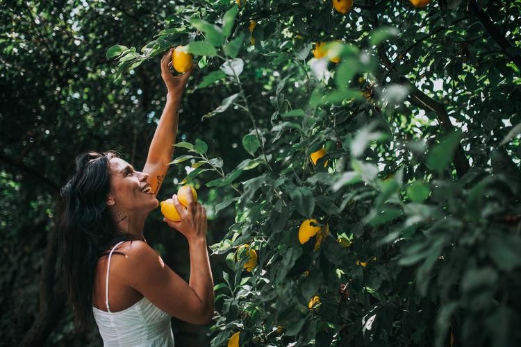 Woman holding fruit on tree