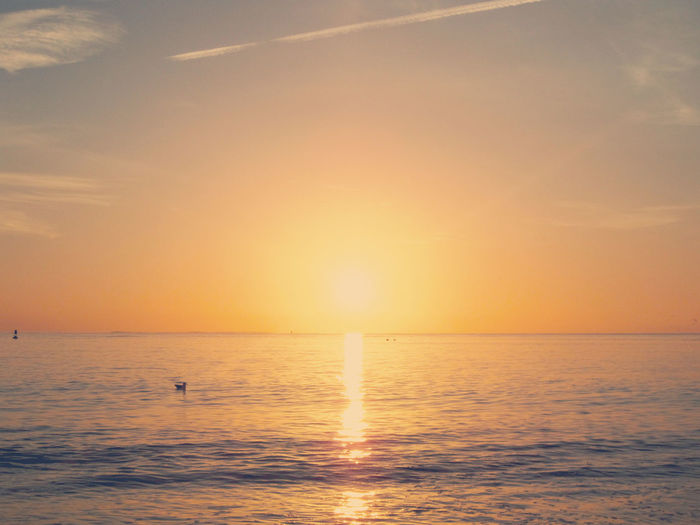 Beach Beauty In Nature Bird Day Horizon Over Water Nature No People Outdoors Reflection Scenics Sea Silhouette Sky Sunlight Sunset Tranquil Scene Tranquility Travel Destinations Vacations Water Waterfront