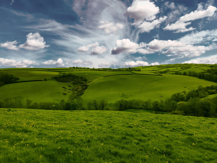 Beautiful Spring Landscape Beauty In Nature Cloud - Sky Day Environment Field Grass Green Color Horizon Horizon Over Land Idyllic Land Landscape Nature No People Non-urban Scene Outdoors Plant Rolling Landscape Scenics - Nature Sky Tranquil Scene Tranquility