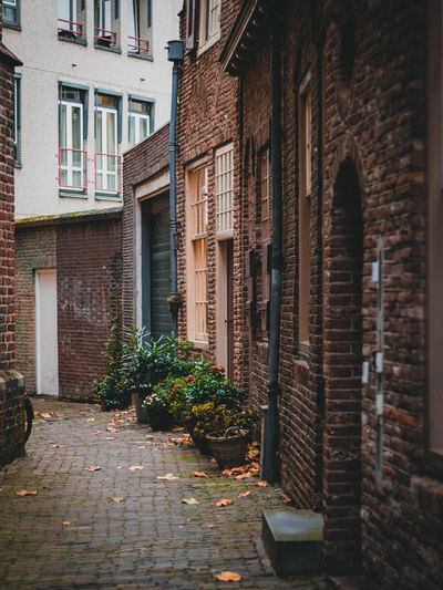 View of nice small streets in utrecht netherlands