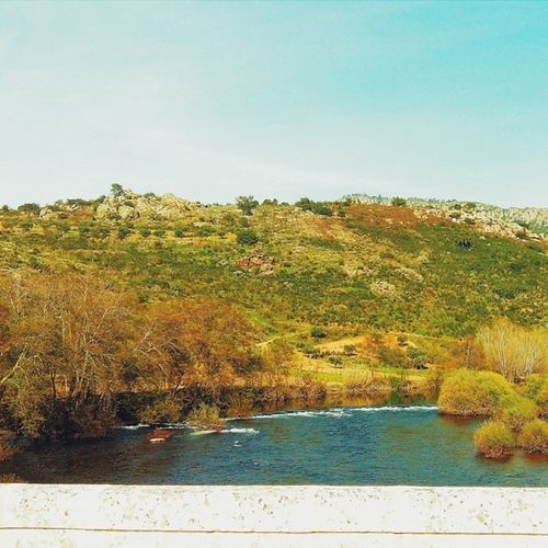 Northeastern Portugal landscape #vscocam #landscape #landscapes #landscapestyles_gf #fabscape #ic_landscapes #igcentric_nature #landscape_lovers #landscapelovers #landscapelover #paisaje #paisagem #paysage #epic #beautiful #tagsta_nature #tagsta #natur #l Awesome_shots Instaworld_love Beautiful Instahub Natur Tagsta Tagsta_nature Love Paisagem Landscape Ic_landscapes Paysage Clubsocial Epic Landscapestyles_gf Paisaje Igcentric_nature Landscapes Igphoto Vscocam Landscapelover Fabscape Landscapelovers Insta_land Latergram Myfav Landscape_lovers