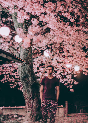 // PINK LOVE // AMPt_community Cherry Blossoms Flower Japan Japan Photography Nature Nature_collection Neon Night Nightphotography Pink Pink Color Sakura Sakura2017 Tree Ultimate Japan Welcome To Black
