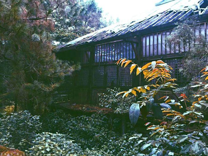 大理最後兩天~• 蘭若寺 • Hello World Temple Yunnan Dalí Photography Japanese
