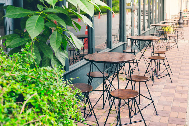 Selective focus of empty table and chair of cafe outside view with vintage color tone Absence Architecture Business Cafe Chair Day Empty Furniture Green Color Leaf Nature No People Outdoor Chair Outdoors Plant Plant Part Potted Plant Restaurant Seat Setting Sidewalk Cafe Table