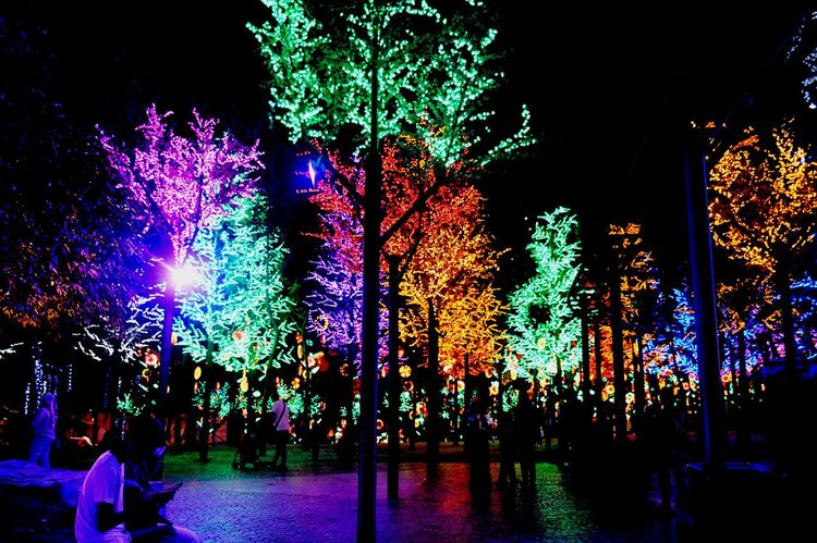 iCity Shah Alam. Light Tree Night Arts Culture And Entertainment Celebration Illuminated Multi Colored People Nightlife Large Group Of People Adults Only Crowd Popular Music Concert Outdoors Adult Performance