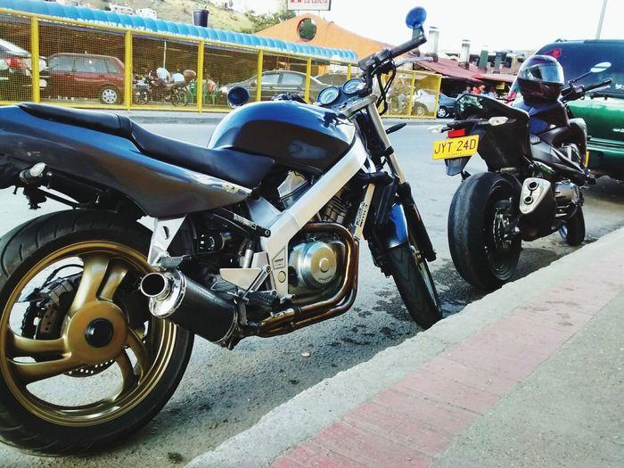 Kawasaki Z800 Motorcycles Honda Hawk Nt 650 La Calera Travel Speed
