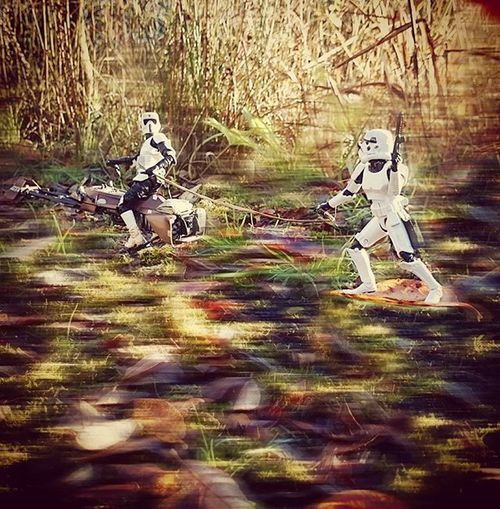 The leaves are too limp for Paraleafing so Norman goes for a bit of surfing instead. 👍 Normanthetrooper Scottythebikerscout Stormtrooper Bikerscout Speederbikes Starwars Starwarselite Toyptoyphotography Toypops Toptoyphotos Zifu_toys Tgif_toys Toyslagram_Starwars Starwarsblackseries Wheretoysdwell_photofeatures Toysaremydrug Toysalive Toysplaying Toyoutsiders Toyunion Justanothertoygroup Epistolary Toydiscovery Toyartistry